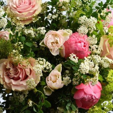 brume rose